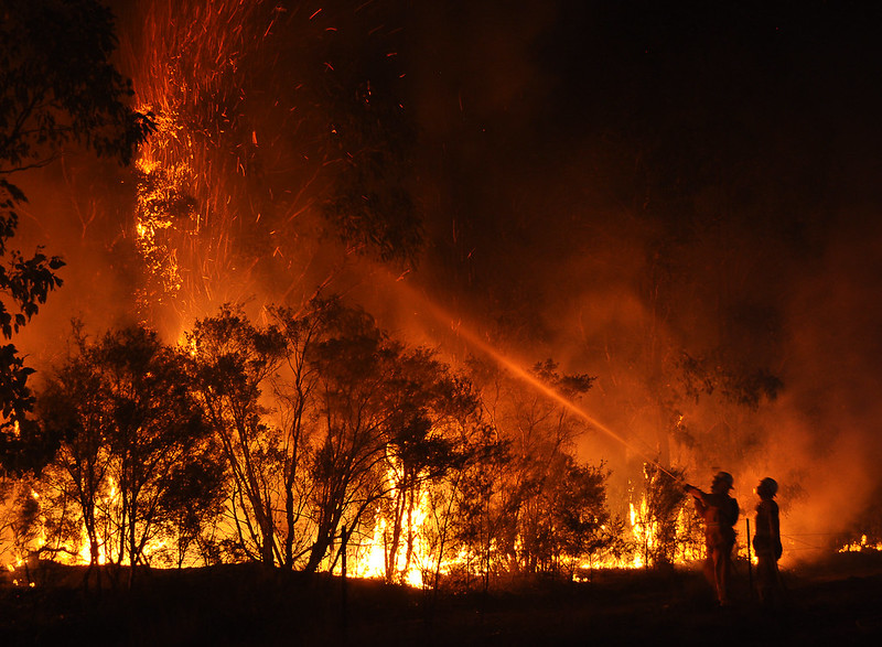 Firefighters tackling bushfire blaze in Cessnock, New South Wales, Australia in 2013